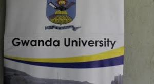 Gwanda State University Intake Form