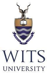 WITS Online Application Form