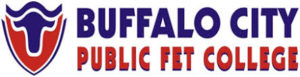Buffalo City TVET College Application Form